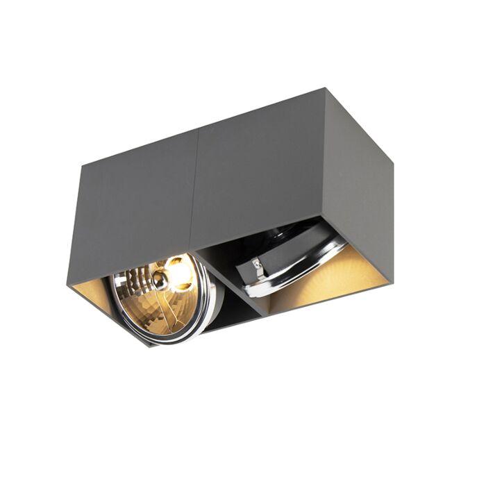 Spot-design-rectangulaire-2-gris-clair-avec-2-x-G9---Boîte