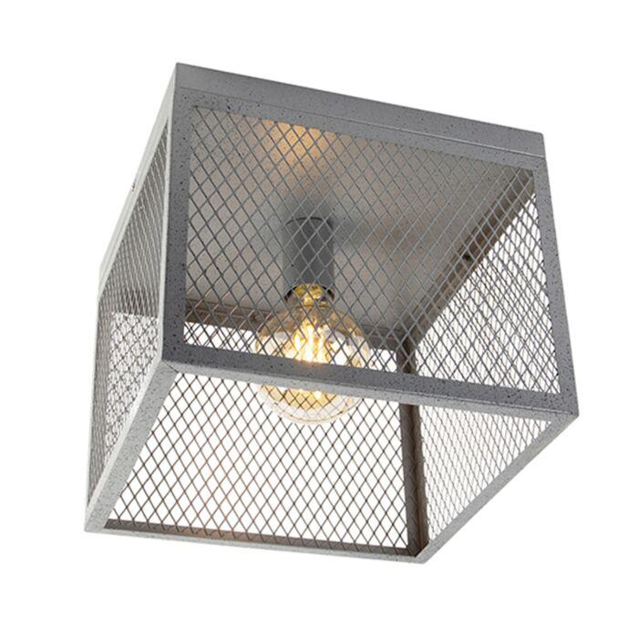 Plafonnier-industriel-argent-antique---Cage-Robusto